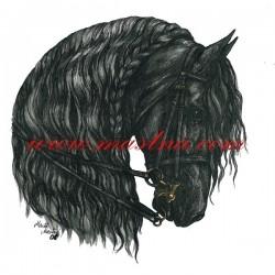 Obraz fríský kůň, koně, perokresba - tisk