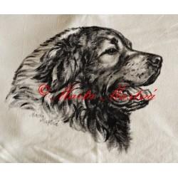 Malované tričko kavkazský pastevecký pes