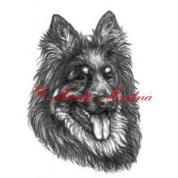 Autorský tisk chodský pes