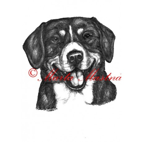Autorský tisk entlebušský salašnický pes