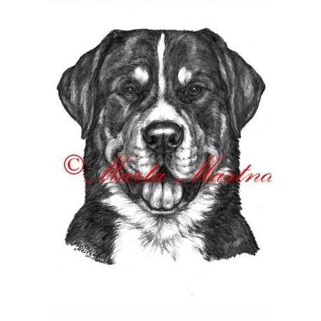 Autorský tisk velký švýcarský salašnický pes