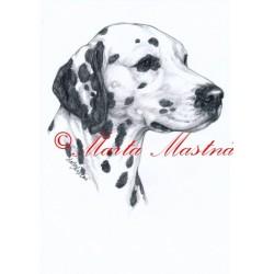Obraz dalmatin, tužka - tisk