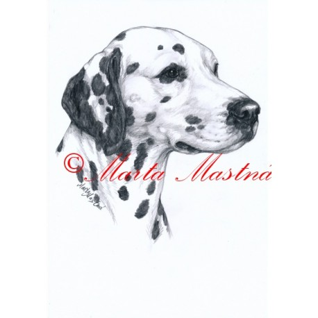 Autorský tisk dalmatin