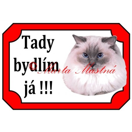 Tabulka kočka ragdoll