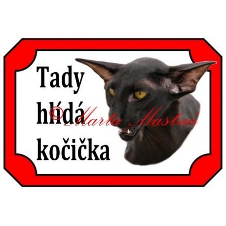Tabulka kočka orientální