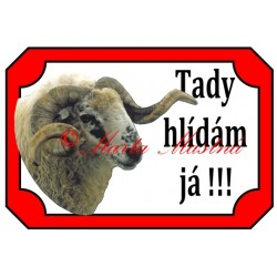 Tabulka beran valaška, ovce