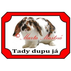 Tabulka králík strakáč beran