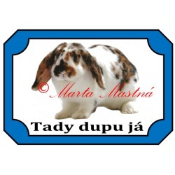 Tabulka králík beran zakrslý, strakáč