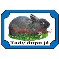 Tabulka králík zakrslý