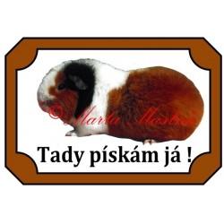 Tabulka morče teddy