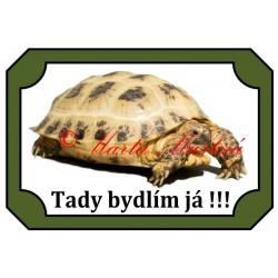 Tabulka želva