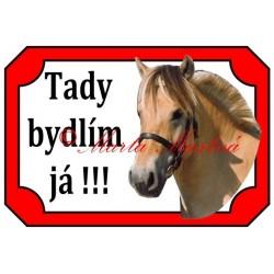 Tabulka kůň fjordský