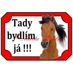 Tabulka kůň paint