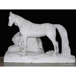 Socha koně