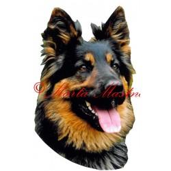 Samolepka chodský pes - archiv