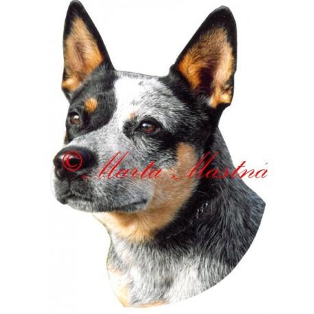 Samolepka australský honácký pes