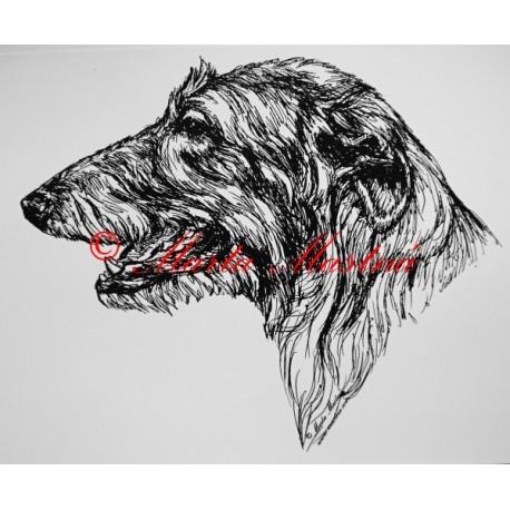 Skotský jelení pes - deerhound