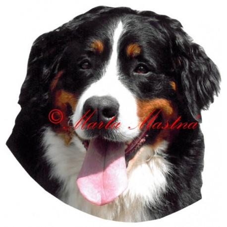 Samolepka Bernsky Salasnicky Pes
