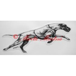 Samolepka greyhound, vipet