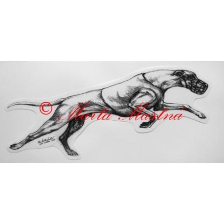 Greyhound, vipet