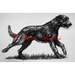 Samolepka irský vlkodav - wolfhound