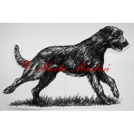 Irský vlkodav - wolfhound