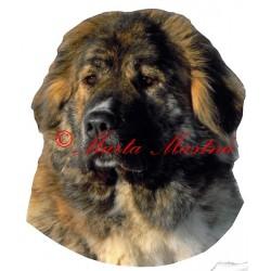 Samolepka kavkazský pastevecký pes archiv