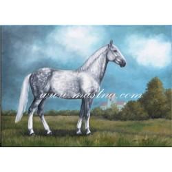 Obraz ve starém stylu - kladrubský kůň