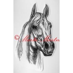 Samolepka kůň arabský