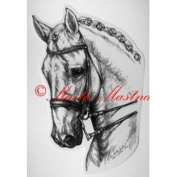 Samolepka drezura, kůň, koně, teplokrevník