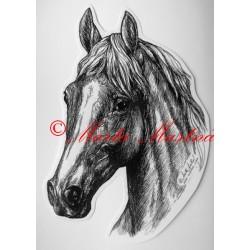 Samolepka kůň teplokrevník, koně