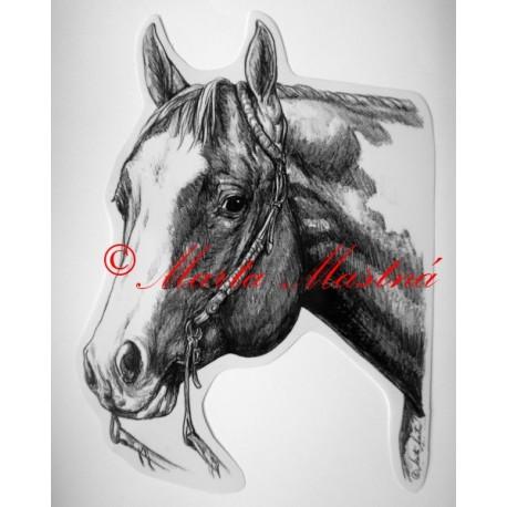 Samolepka kůň paint horse, western