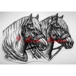 Samolepka chladnokrevníci, spřežení, koně