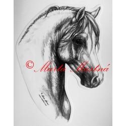 Samolepka velšpony, pony, kůň, koně