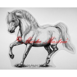 Samolepka kůň pony, velšpony