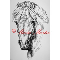 Samolepka kůň fjordský pony
