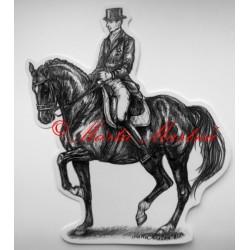 Samolepka kůň teplokrevník, drezura