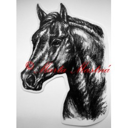 Samolepka quarter horse, western, kůň, koně