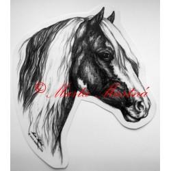 Samolepka irský cob, tinker, kůň, koně