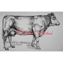 Samolepka kráva