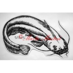 Samolepka sumec, ryby