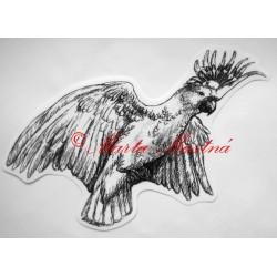 Samolepka kakadu, papoušek