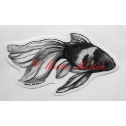 Ryba akvarijní závojnatka