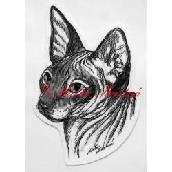 Kočka sfinx