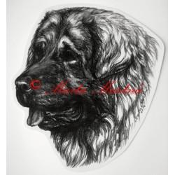 Samolepka šarplaninský pastevecký pes - šarplaninec