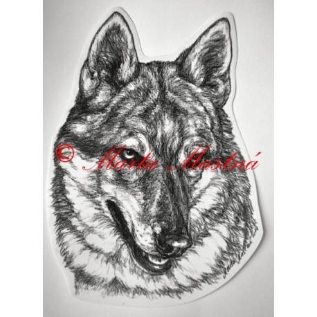 Československý vlčák, vlk