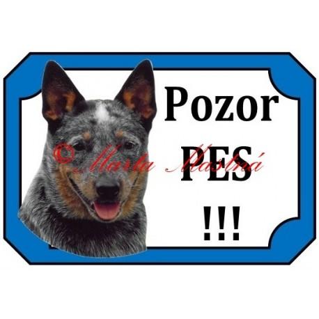 Tabulka australský honácký pes