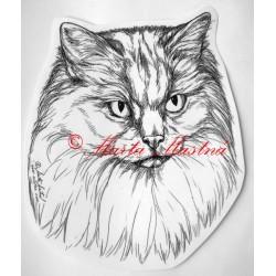 Samolepka kočka ragdoll