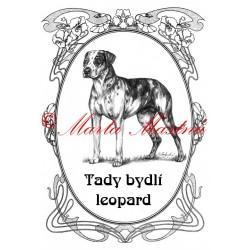 Tabulka catahoula louisiana leopard dog