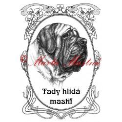 Tabulka anglický mastif